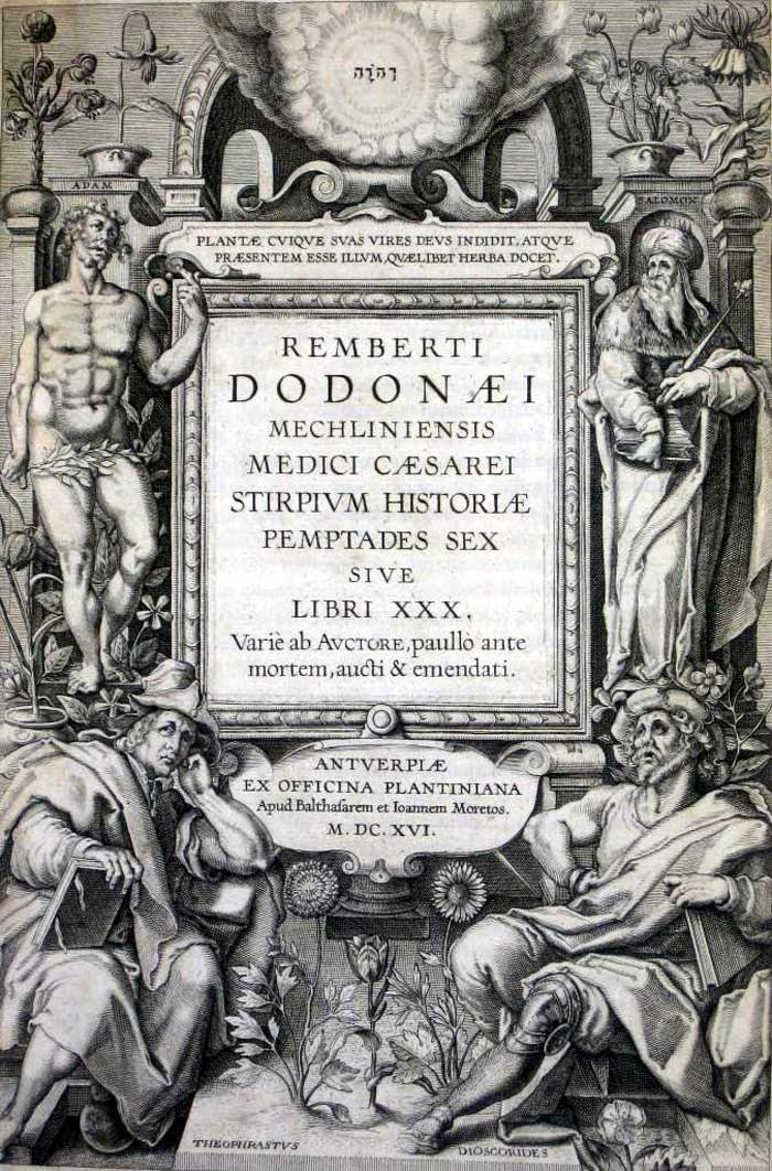Dodoens4