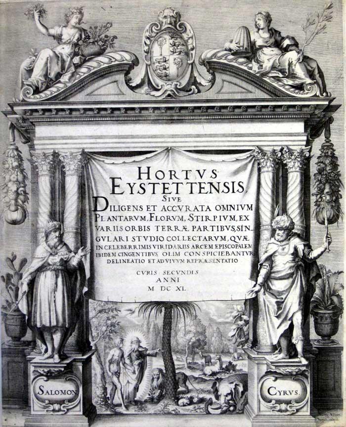 Hortus Eystettensis1