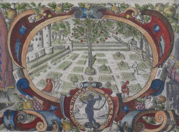 Sixteenth Century1