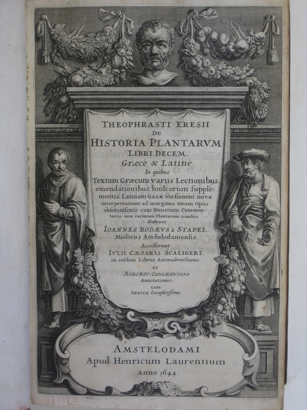 Theophrastus4